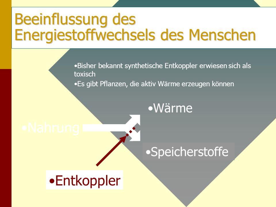 Beeinflussung des Energiestoffwechsels des Menschen Nahrung Wärme Speicherstoffe Entkoppler Bisher bekannt synthetische Entkoppler erwiesen sich als t