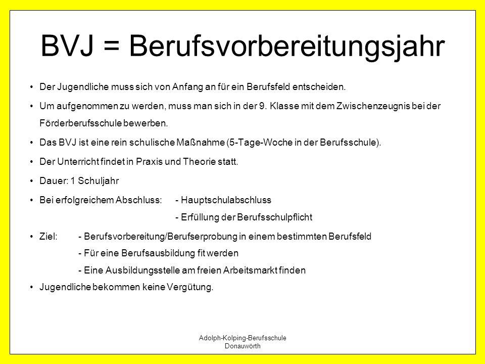Adolph-Kolping-Berufsschule Donauwörth BVJ = Berufsvorbereitungsjahr Der Jugendliche muss sich von Anfang an für ein Berufsfeld entscheiden. Um aufgen