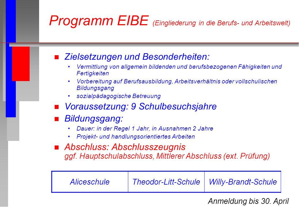 Programm EIBE (Eingliederung in die Berufs- und Arbeitswelt) n Zielsetzungen und Besonderheiten: Vermittlung von allgemein bildenden und berufsbezogen
