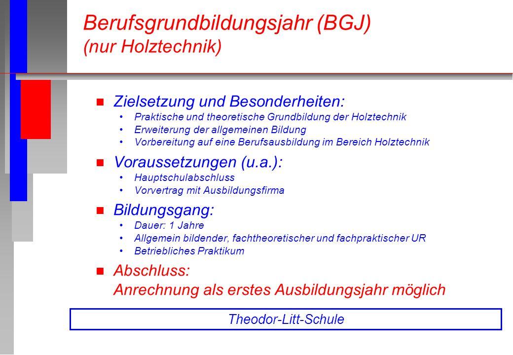 n Zielsetzung und Besonderheiten: Praktische und theoretische Grundbildung der Holztechnik Erweiterung der allgemeinen Bildung Vorbereitung auf eine B