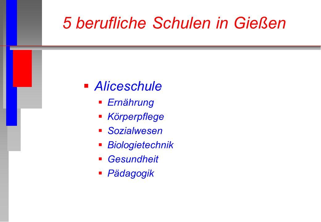 Aliceschule Ernährung Körperpflege Sozialwesen Biologietechnik Gesundheit Pädagogik 5 berufliche Schulen in Gießen