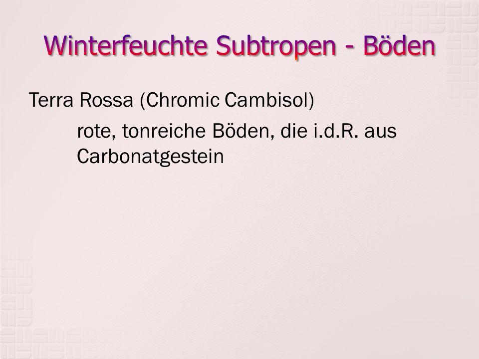 Terra Rossa (Chromic Cambisol) rote, tonreiche Böden, die i.d.R. aus Carbonatgestein