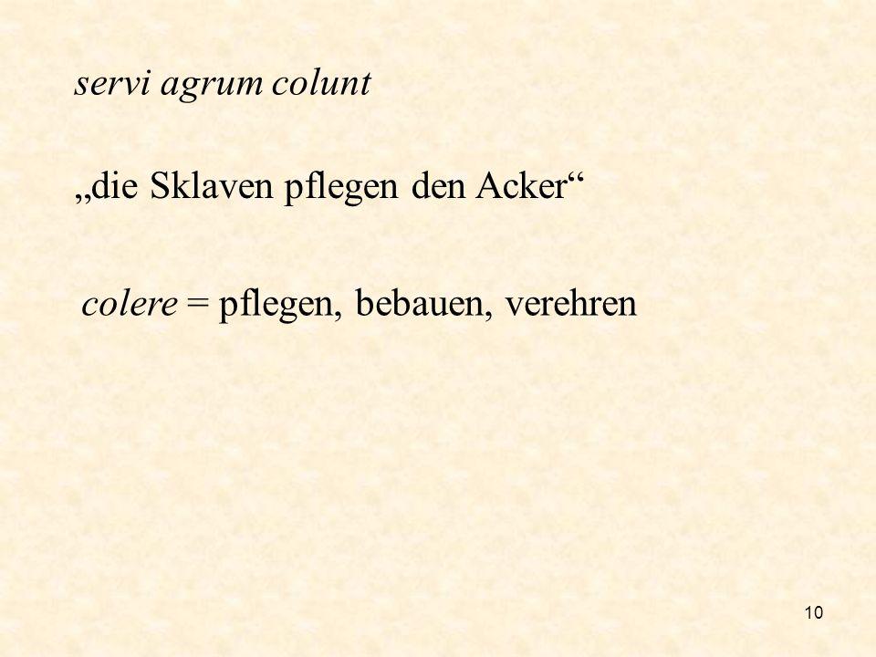 10 servi agrum colunt die Sklaven pflegen den Acker colere = pflegen, bebauen, verehren