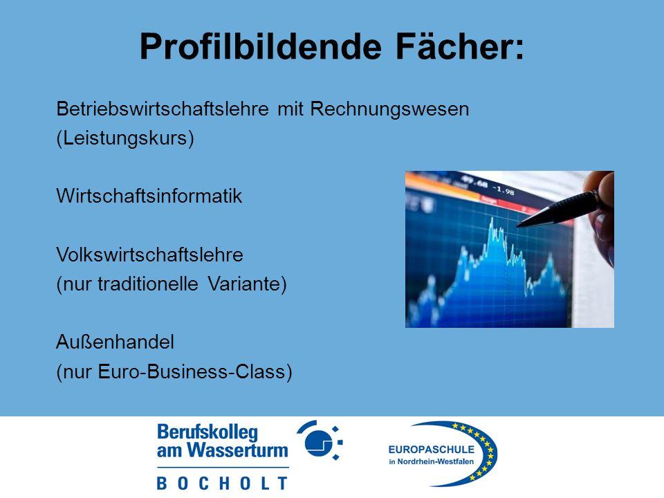 Profilbildende Fächer: Betriebswirtschaftslehre mit Rechnungswesen (Leistungskurs) Wirtschaftsinformatik Volkswirtschaftslehre (nur traditionelle Variante) Außenhandel (nur Euro-Business-Class)