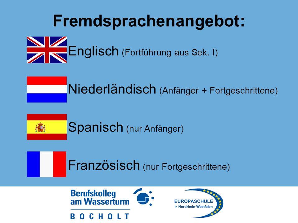 Fremdsprachenangebot: Englisch (Fortführung aus Sek.