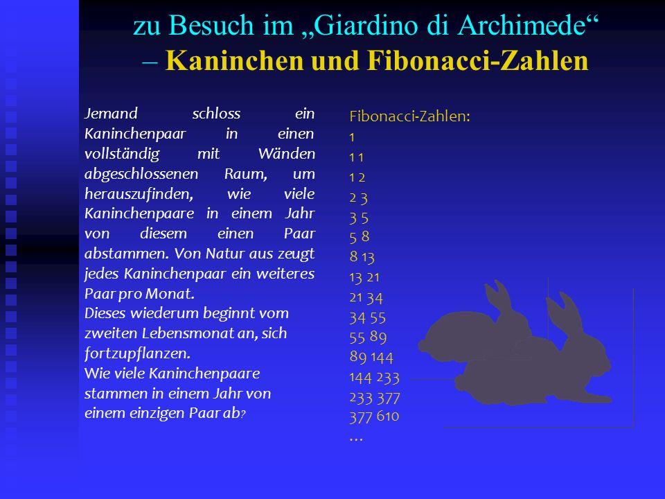 zu Besuch im Giardino di Archimede – Kaninchen und Fibonacci-Zahlen Jemand schloss ein Kaninchenpaar in einen vollständig mit Wänden abgeschlossenen R