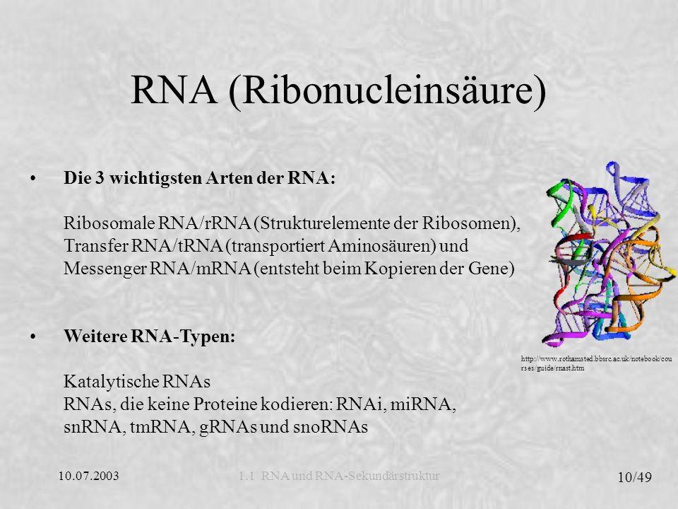 10.07.2003 11/49 1.1 RNA und RNA-Sekundärstruktur RNA-Sekundärstruktur Die RNA-Sekundärstruktur ist die Vereinfachung einer komplexen dreidimensionalen Faltung eines Biopolymers.