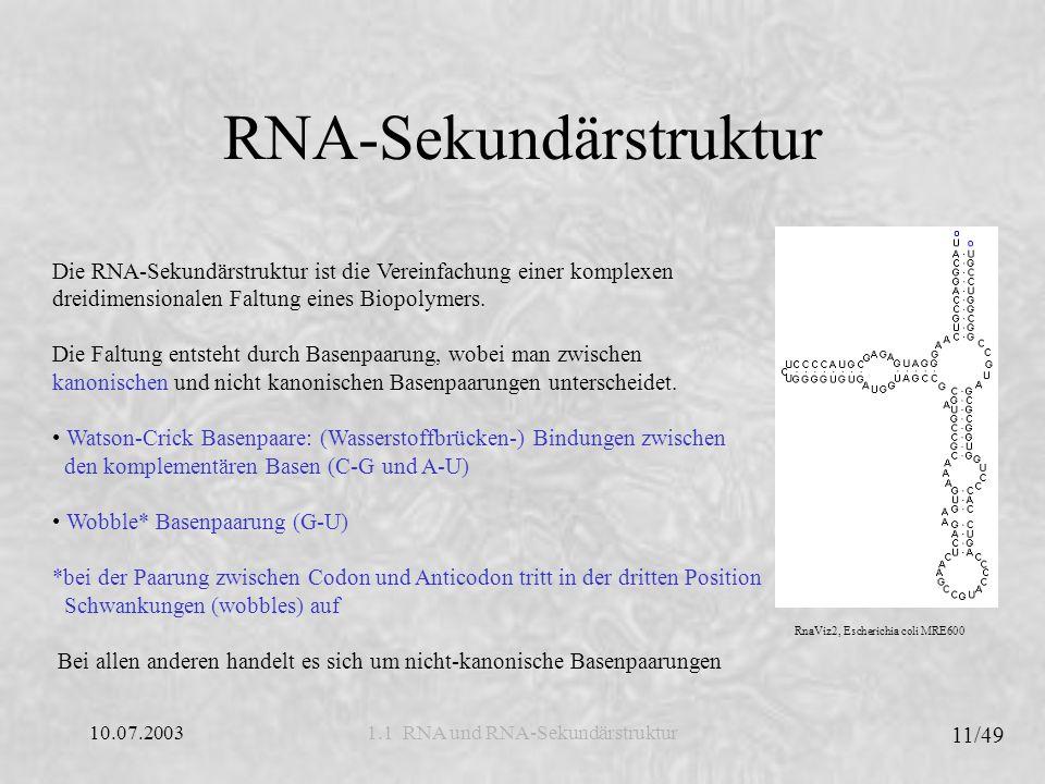 10.07.2003 12/49 1.2 Strukturelle Elemente und Pseudoknoten Strukturelle Elemente RNA-Schleifen (reguläre Schleifen): Sind Bereiche der Sequenz der Sekundärstruktur, die nicht kanonische Basenpaare beinhalten, jedoch durch ein oder mehrere kanonische Basenpaare begrenzt sind.