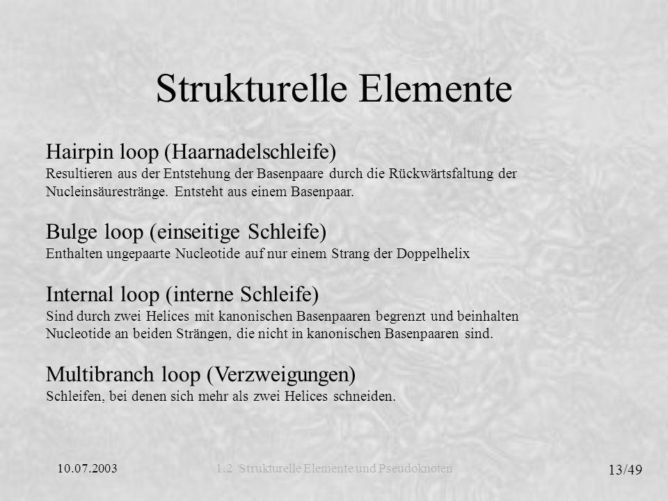 10.07.2003 13/49 1.2 Strukturelle Elemente und Pseudoknoten Strukturelle Elemente Hairpin loop (Haarnadelschleife) Resultieren aus der Entstehung der Basenpaare durch die Rückwärtsfaltung der Nucleinsäurestränge.