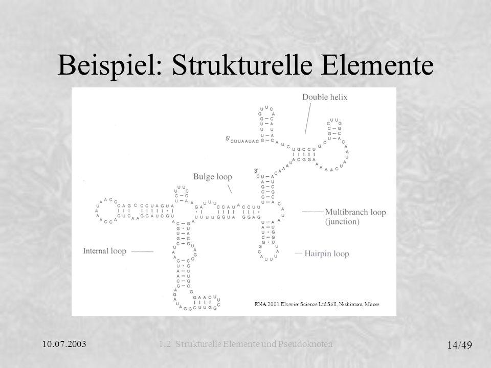 10.07.2003 14/49 1.2 Strukturelle Elemente und Pseudoknoten Beispiel: Strukturelle Elemente RNA 2001 Elsevier Science Ltd Söll, Nishimura, Moore