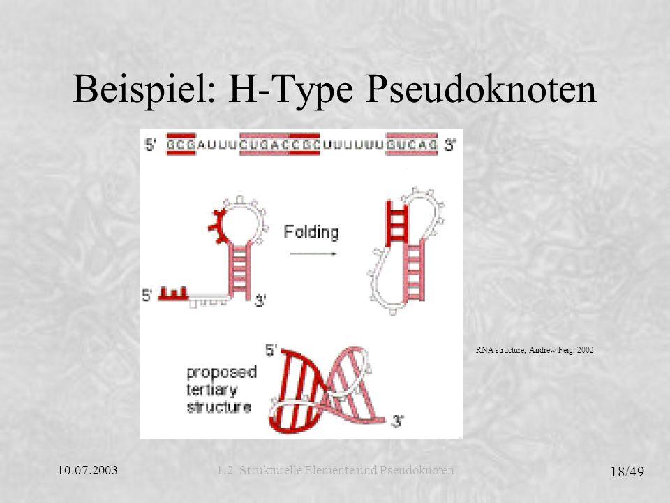 10.07.2003 18/49 1.2 Strukturelle Elemente und Pseudoknoten Beispiel: H-Type Pseudoknoten RNA structure, Andrew Feig, 2002