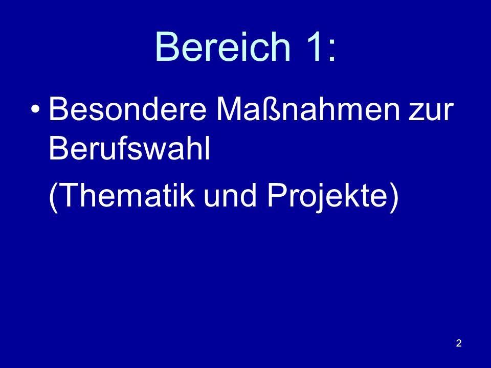 2 Bereich 1: Besondere Maßnahmen zur Berufswahl (Thematik und Projekte)
