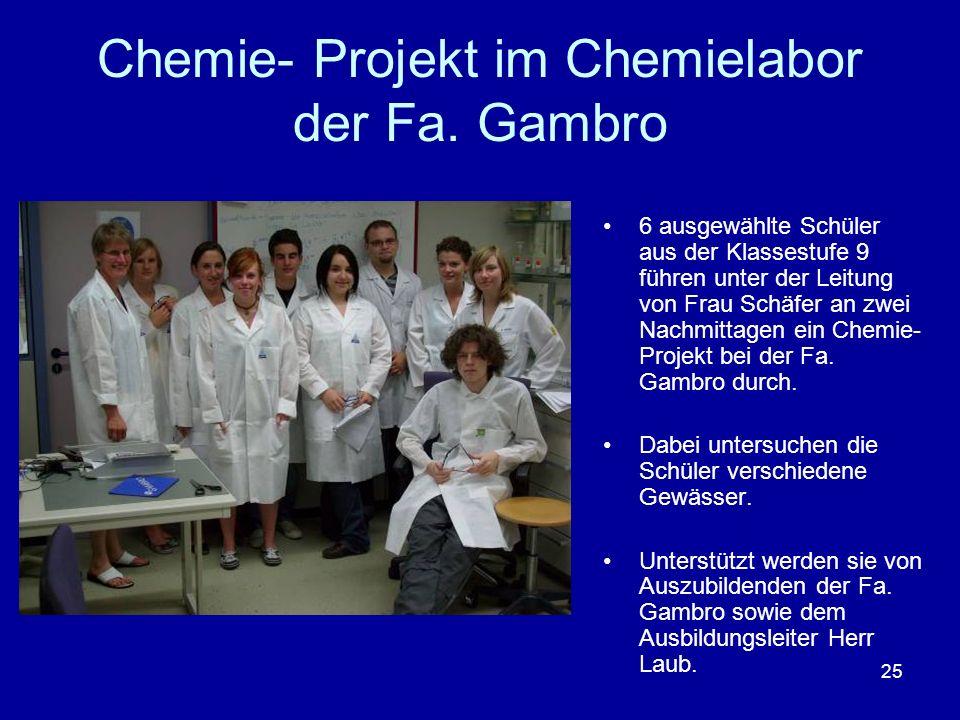 25 Chemie- Projekt im Chemielabor der Fa. Gambro 6 ausgewählte Schüler aus der Klassestufe 9 führen unter der Leitung von Frau Schäfer an zwei Nachmit