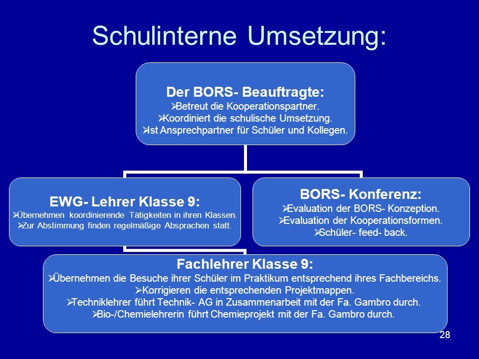 28 Schulinterne Umsetzung: Der BORS- Beauftragte: Betreut die Kooperationspartner. Koordiniert die schulische Umsetzung. Ist Ansprechpartner für Schül