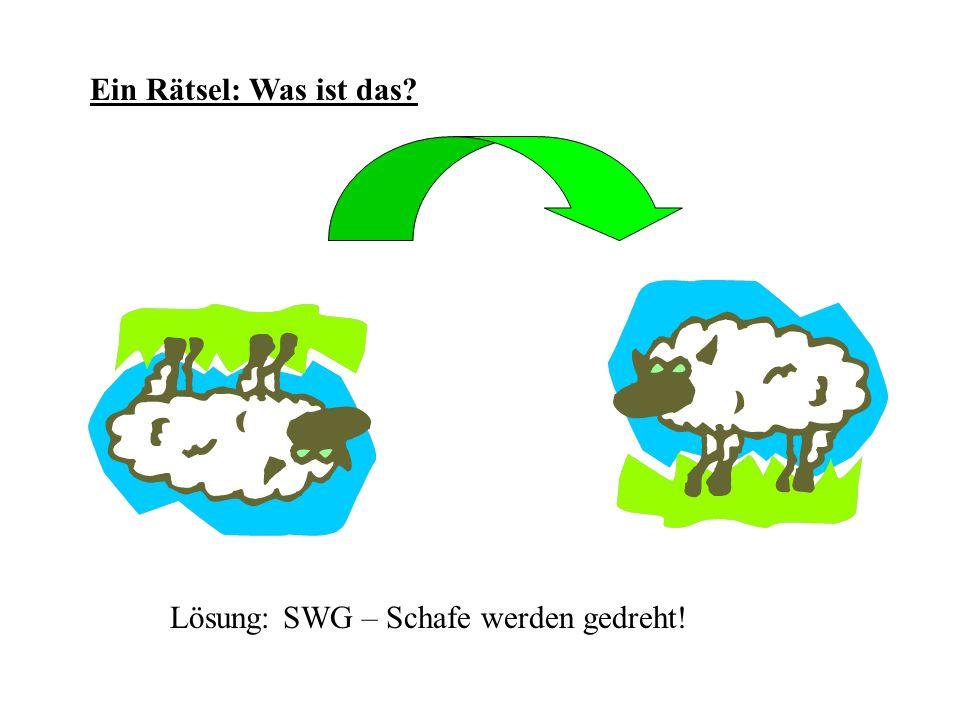 Ein Rätsel: Was ist das? Lösung: SWG – Schafe werden gedreht!