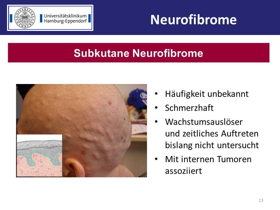 13 Neurofibrome Subkutane Neurofibrome Häufigkeit unbekannt Schmerzhaft Wachstumsauslöser und zeitliches Auftreten bislang nicht untersucht Mit intern