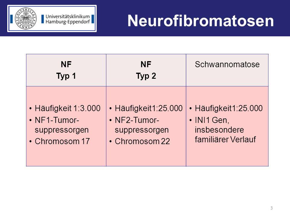 Neurofibromatosen 3 NF Typ 1 NF Typ 2 Häufigkeit 1:3.000 NF1-Tumor- suppressorgen Chromosom 17 Häufigkeit1:25.000 NF2-Tumor- suppressorgen Chromosom 2