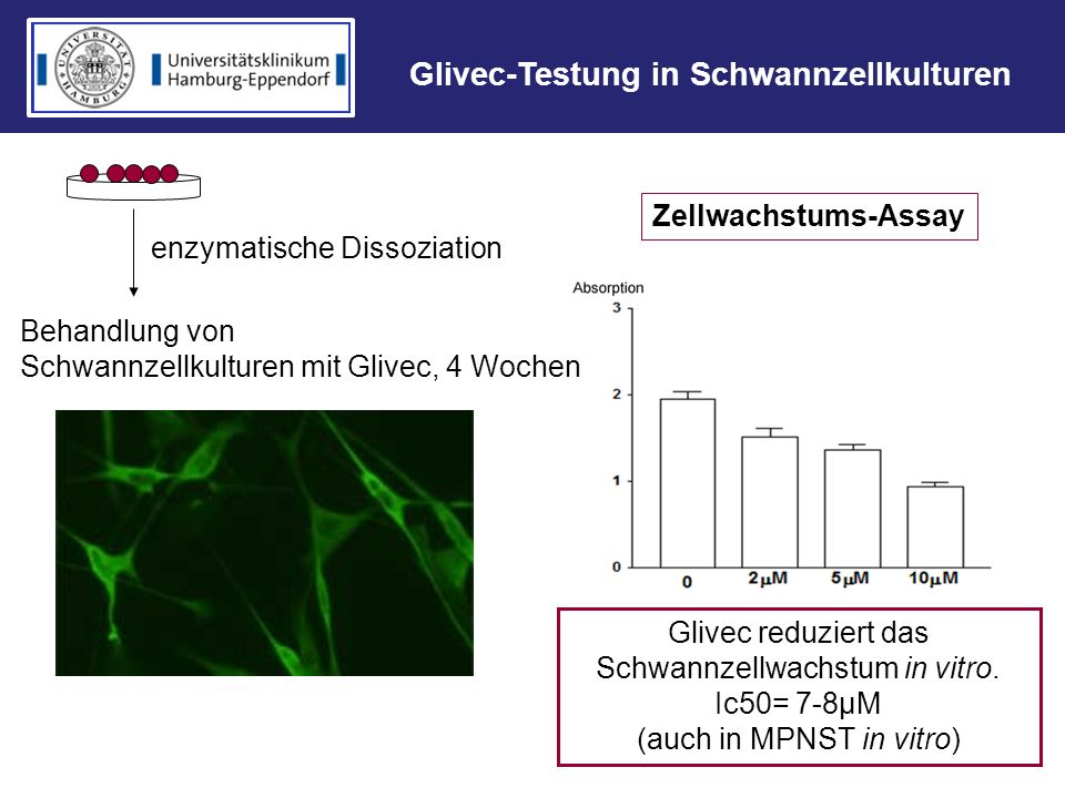 enzymatische Dissoziation Behandlung von Schwannzellkulturen mit Glivec, 4 Wochen Zellwachstums-Assay Glivec reduziert das Schwannzellwachstum in vitr