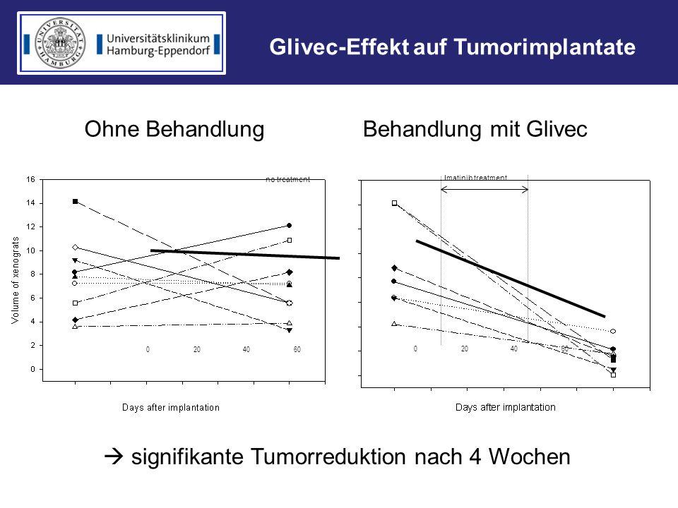 signifikante Tumorreduktion nach 4 Wochen 0 20 40 60 Imatinib treatment no treatment Ohne BehandlungBehandlung mit Glivec Glivec-Effekt auf Tumorimpla