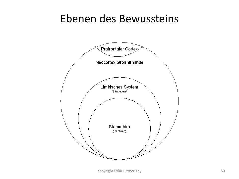 30 Ebenen des Bewussteins 30copyright Erika Lützner-Lay
