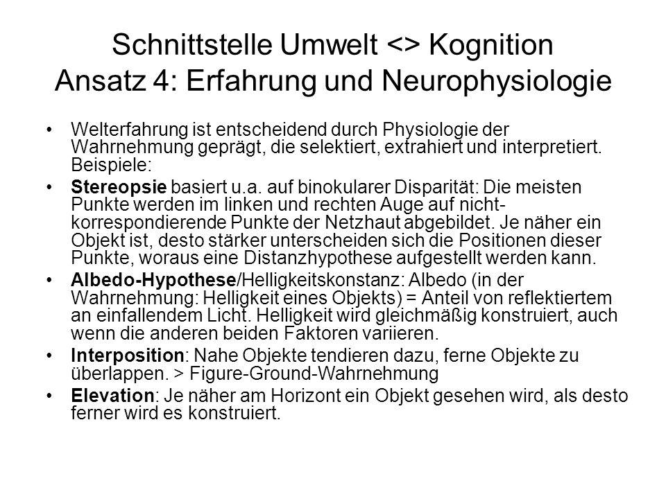 Schnittstelle Umwelt <> Kognition Ansatz 4: Erfahrung und Neurophysiologie Welterfahrung ist entscheidend durch Physiologie der Wahrnehmung geprägt, d