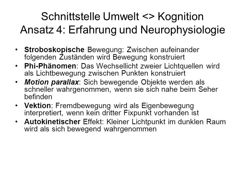 Schnittstelle Umwelt <> Kognition Ansatz 4: Erfahrung und Neurophysiologie Stroboskopische Bewegung: Zwischen aufeinander folgenden Zuständen wird Bew
