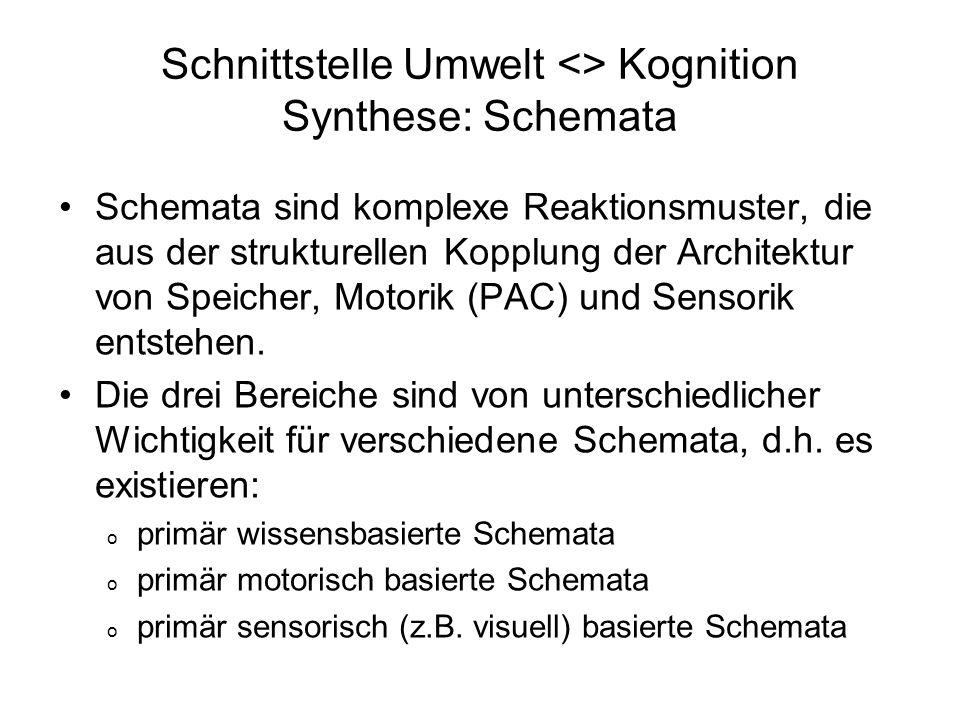 Schnittstelle Umwelt <> Kognition Synthese: Schemata Schemata sind komplexe Reaktionsmuster, die aus der strukturellen Kopplung der Architektur von Sp