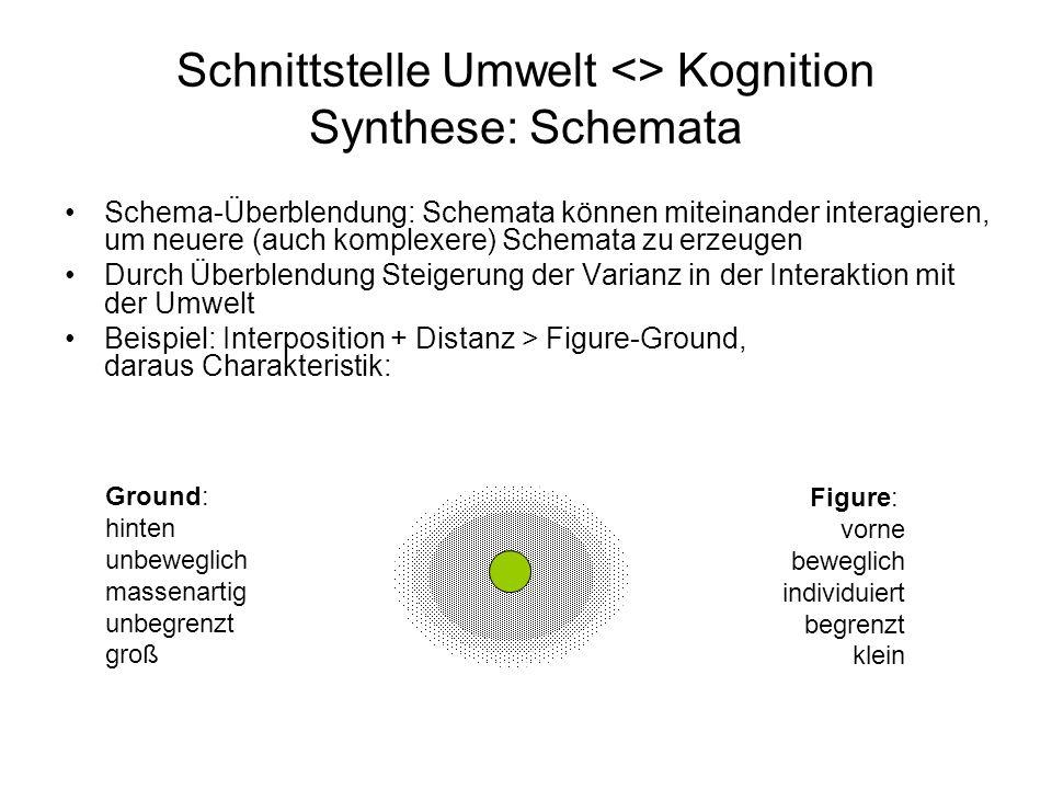 Ground: hinten unbeweglich massenartig unbegrenzt groß Schnittstelle Umwelt <> Kognition Synthese: Schemata Schema-Überblendung: Schemata können mitei