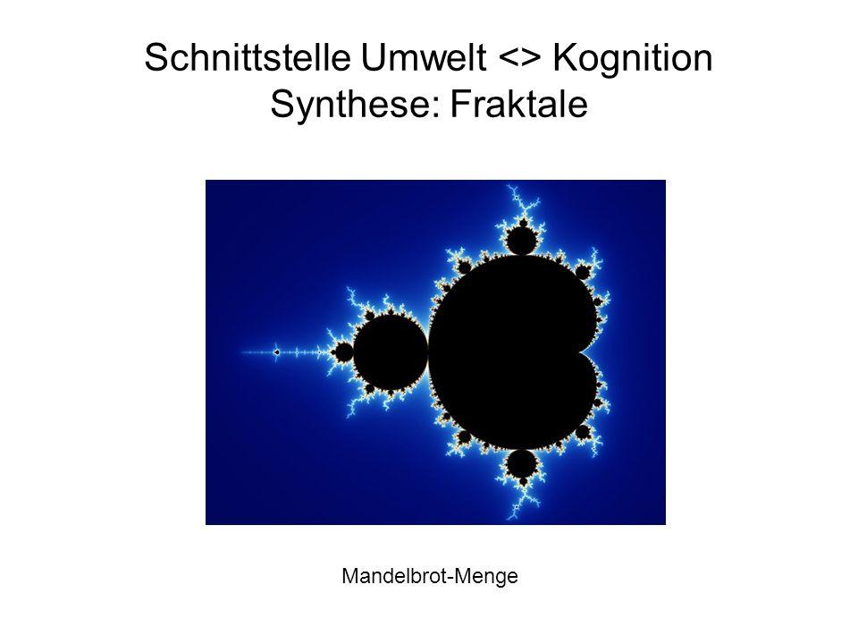 Schnittstelle Umwelt <> Kognition Synthese: Fraktale Mandelbrot-Menge