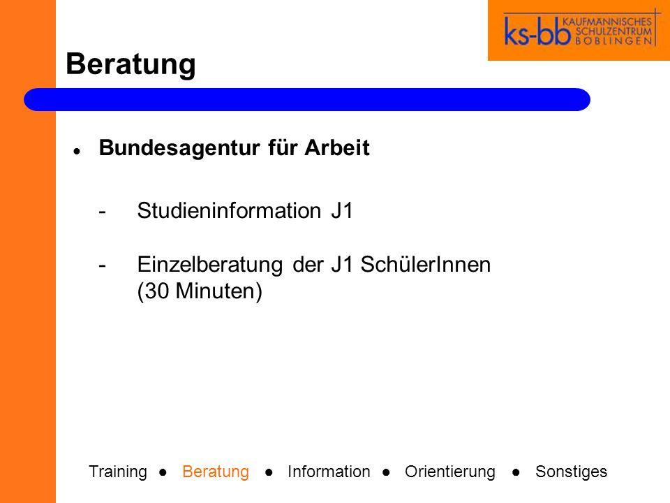 Beratung Training Beratung Information Orientierung Sonstiges Bundesagentur für Arbeit -StudieninformationJ1 -Einzelberatung der J1 SchülerInnen (30 M