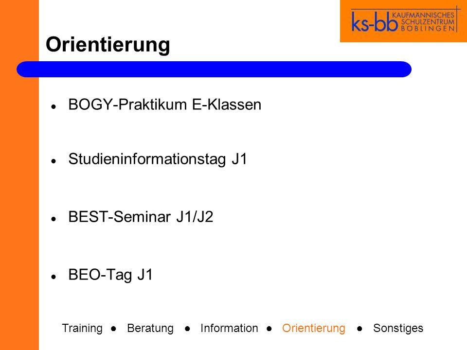 Orientierung BOGY-Praktikum E-Klassen Studieninformationstag J1 BEST-Seminar J1/J2 BEO-Tag J1 Training Beratung Information Orientierung Sonstiges