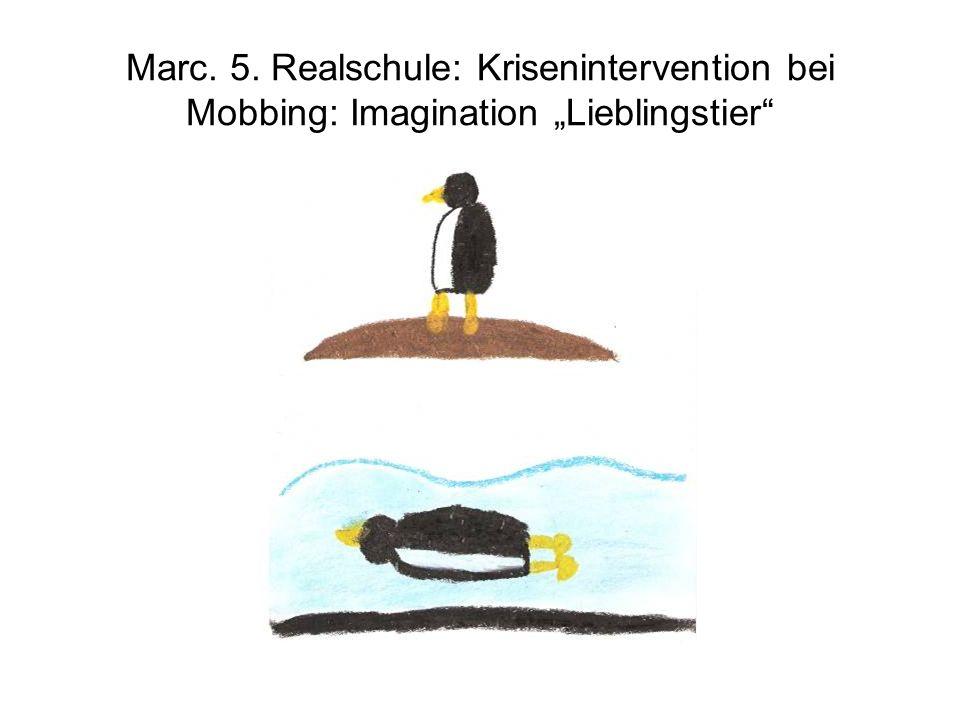 Marc. 5. Realschule: Krisenintervention bei Mobbing: Imagination Lieblingstier