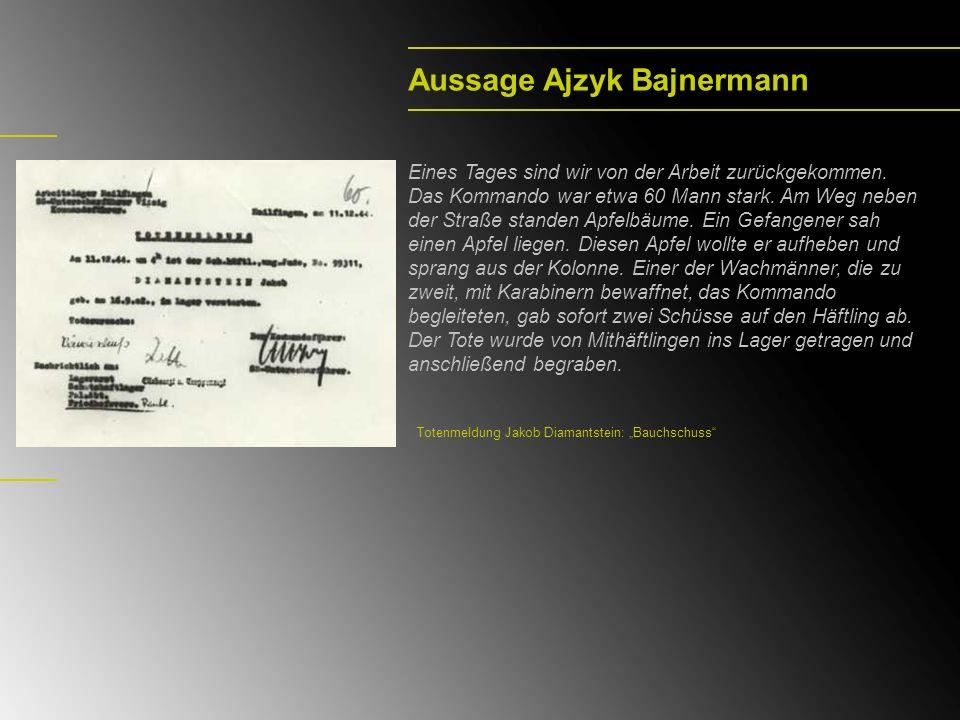 Aussage Ajzyk Bajnermann Eines Tages sind wir von der Arbeit zurückgekommen.