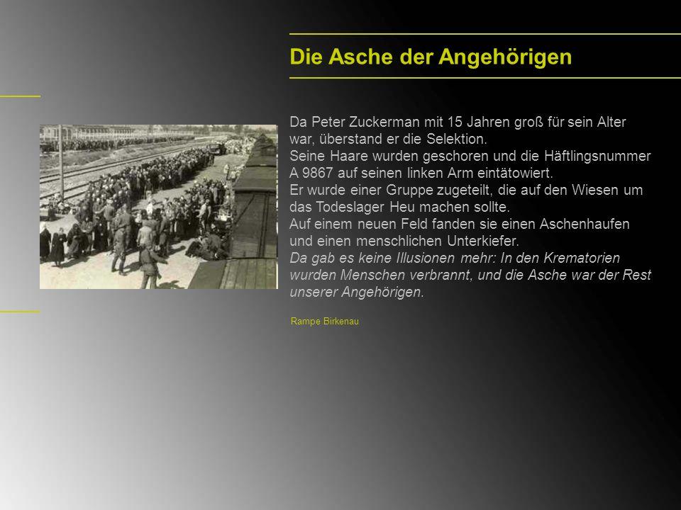 Im offenen Wagen Am 16.10.1944 wurde Peter Zuckerman mit einer Gruppe von Häftlingen nach Stutthof und von dort einen Monat später nach Hailfingen transportiert.