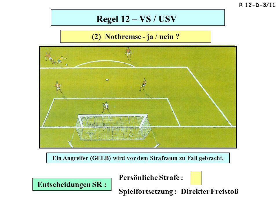 Regel 12 – VS / USV Entscheidungen SR : Persönliche Strafe : Spielfortsetzung : Direkter Freistoß Ein Angreifer (GELB) wird vor dem Strafraum zu Fall gebracht.