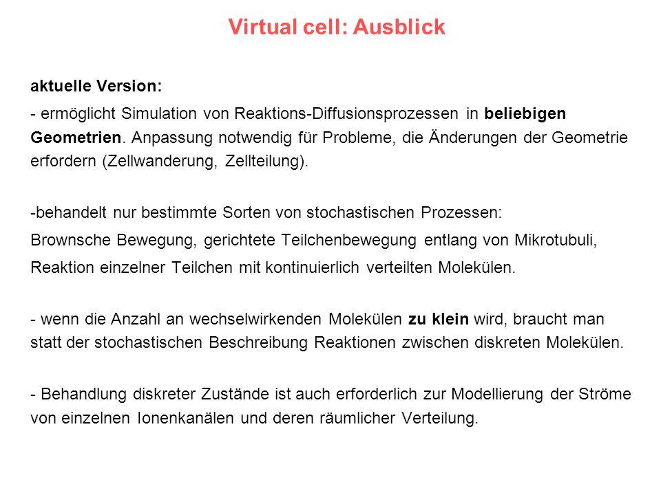 Virtual cell: Ausblick aktuelle Version: - ermöglicht Simulation von Reaktions-Diffusionsprozessen in beliebigen Geometrien. Anpassung notwendig für P