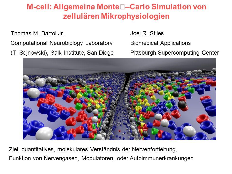 M-cell: Allgemeine Monte–Carlo Simulation von zellulären Mikrophysiologien Thomas M. Bartol Jr. Joel R. Stiles Computational Neurobiology Laboratory B
