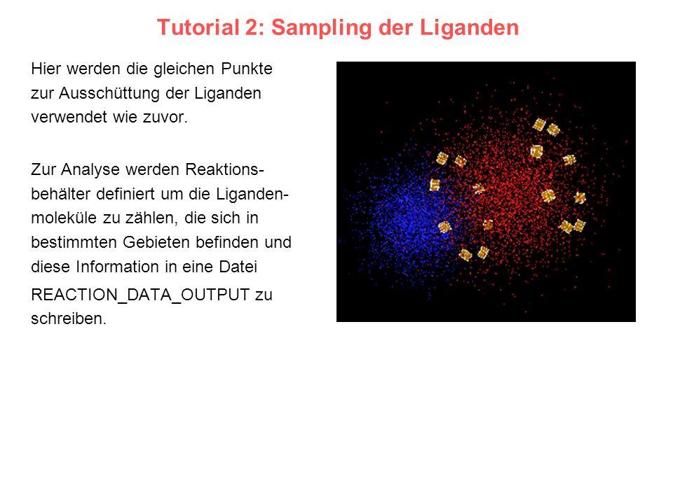 Tutorial 2: Sampling der Liganden Hier werden die gleichen Punkte zur Ausschüttung der Liganden verwendet wie zuvor. Zur Analyse werden Reaktions- beh