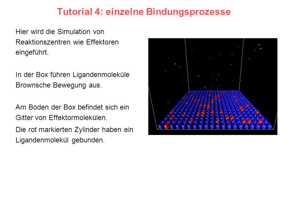 Tutorial 4: einzelne Bindungsprozesse Hier wird die Simulation von Reaktionszentren wie Effektoren eingeführt. In der Box führen Ligandenmoleküle Brow
