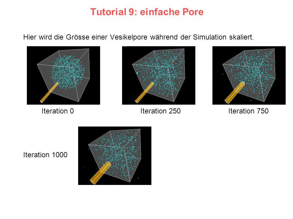 Tutorial 9: einfache Pore Hier wird die Grösse einer Vesikelpore während der Simulation skaliert. Iteration 0Iteration 250Iteration 750 Iteration 1000