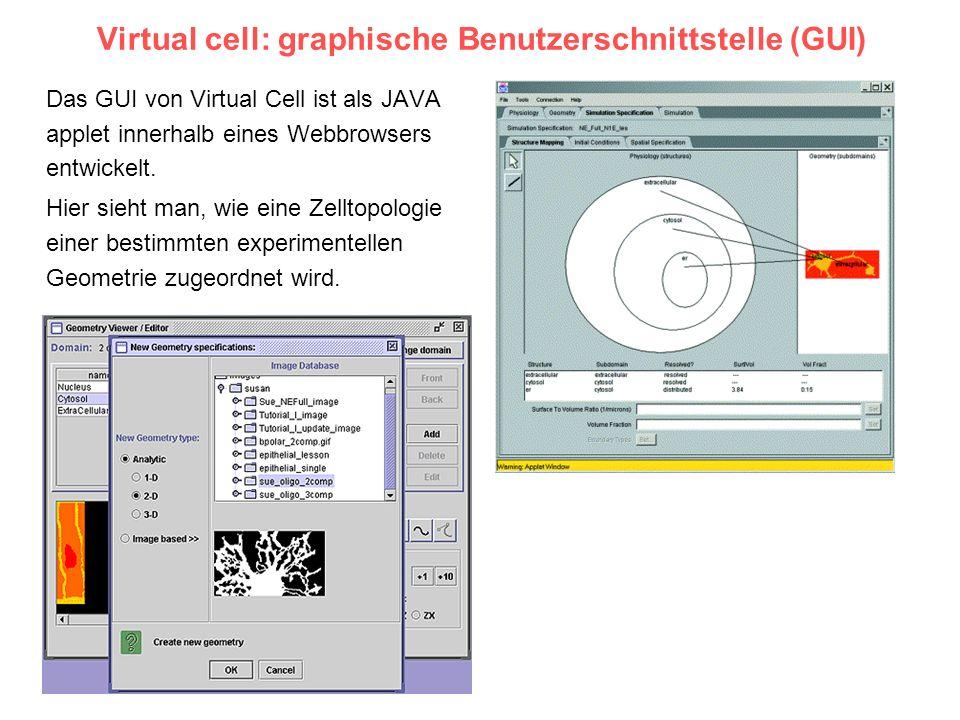 Virtual cell: graphische Benutzerschnittstelle (GUI) Das GUI von Virtual Cell ist als JAVA applet innerhalb eines Webbrowsers entwickelt. Hier sieht m