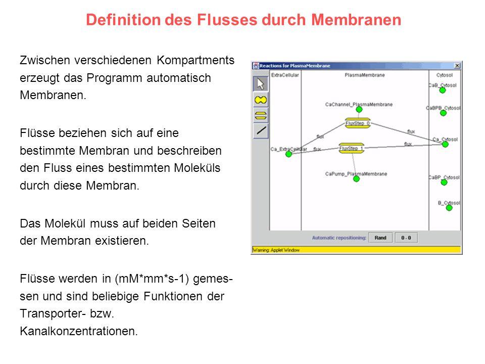 Definition des Flusses durch Membranen Zwischen verschiedenen Kompartments erzeugt das Programm automatisch Membranen. Flüsse beziehen sich auf eine b