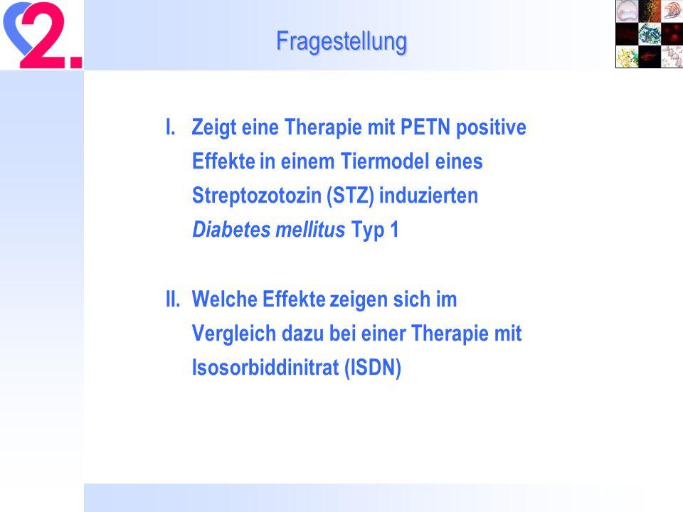 Fragestellung I.Zeigt eine Therapie mit PETN positive Effekte in einem Tiermodel eines Streptozotozin (STZ) induzierten Diabetes mellitus Typ 1 II.Welche Effekte zeigen sich im Vergleich dazu bei einer Therapie mit Isosorbiddinitrat (ISDN)