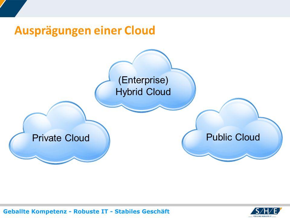 © SHE Informationstechnologie AG, 2009 www.she.net Merkmale einer Private Cloud Cloud: flexible Bereitstellung von IT-Ressourcen und deren Abrechnung nach tatsächlicher Nutzung (Virtuelle Infrastruktur: on-demand, selbst gemanagt) Anbieter und Nutzer der Cloud Services sind im gleichen Unternehmen (Enterprise Cloud) Cloud Anbieter stellt den Nutzern Cloud Services exklusiv für das Unternehmen des Nutzers bereit (Exclusive Cloud) > Private Cloud: Datenhaltung und Computing-Ressourcen sind unter der Kontrolle des Nutzer