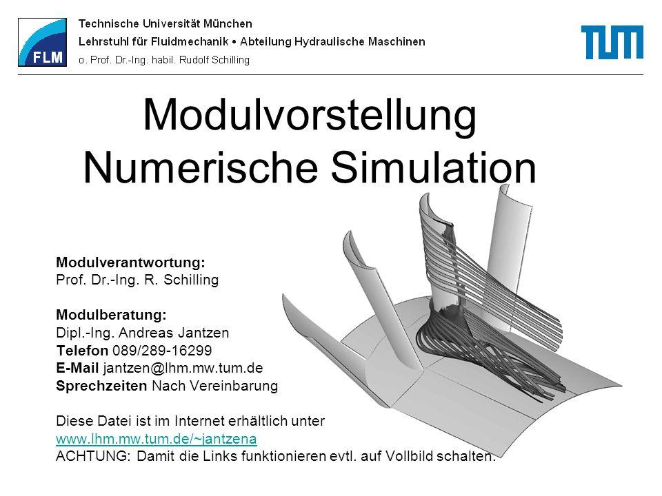 Modulvorstellung Numerische Simulation Modulverantwortung: Prof. Dr.-Ing. R. Schilling Modulberatung: Dipl.-Ing. Andreas Jantzen Telefon 089/289-16299