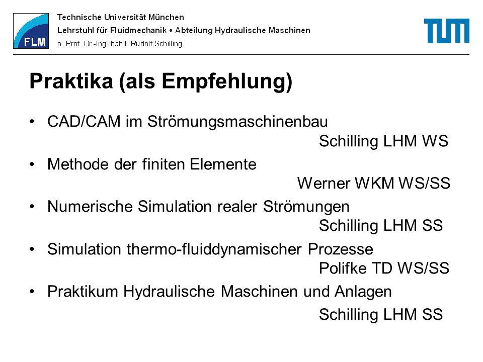 Praktika (als Empfehlung) CAD/CAM im Strömungsmaschinenbau Schilling LHM WS Methode der finiten Elemente Werner WKM WS/SS Numerische Simulation realer