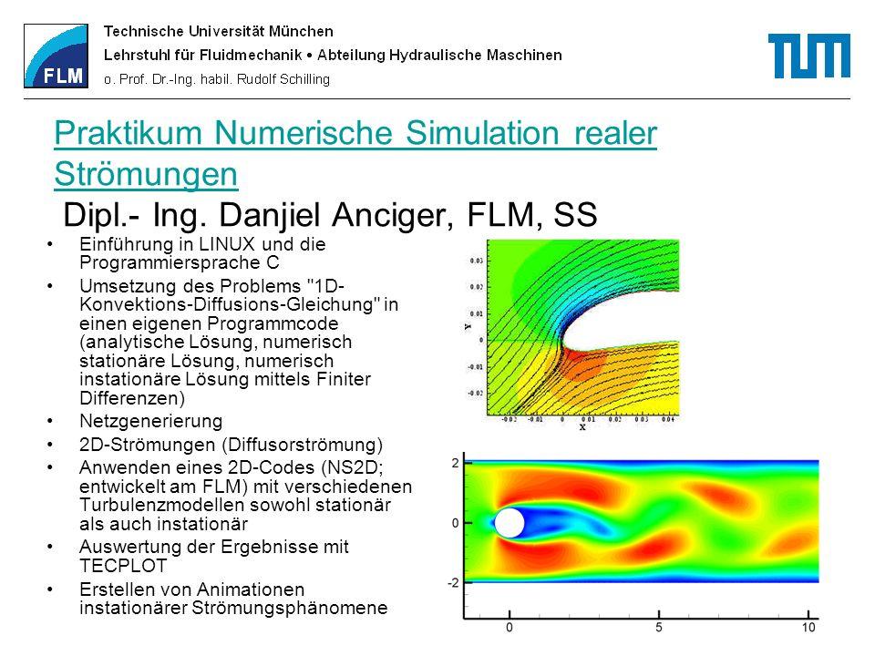 Weitere Programmier-Praktika der Fakultät Maschinenwesen TD - Lehrstuhl für Thermodynamik (Prof.