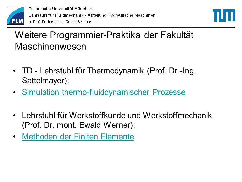 Weitere Programmier-Praktika der Fakultät Maschinenwesen TD - Lehrstuhl für Thermodynamik (Prof. Dr.-Ing. Sattelmayer): Simulation thermo-fluiddynamis