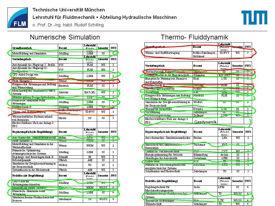 Numerische Simulation Thermo- Fluiddynamik Gasdynamik