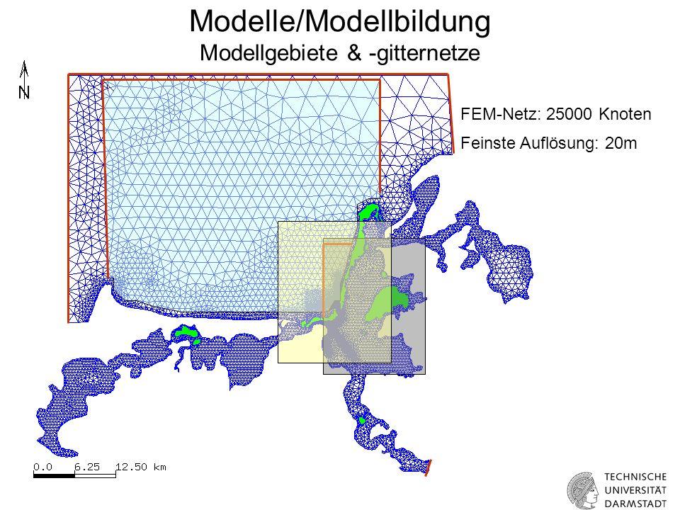 Modelle/Modellbildung Modellgebiete & -gitternetze FEM-Netz: 25000 Knoten Feinste Auflösung: 20m